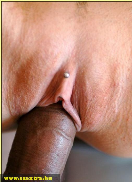 Piercinges punci